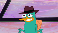 Perry lol