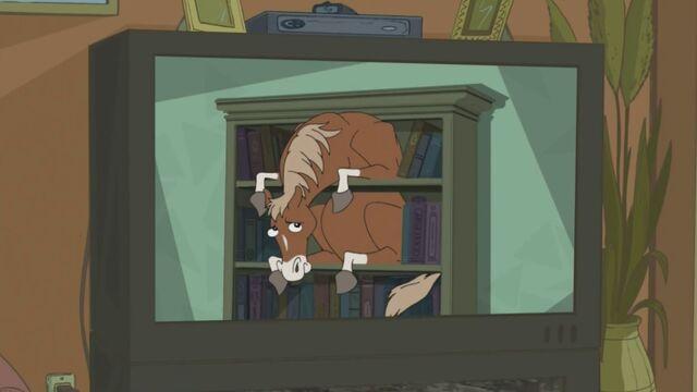 File:Horse in a Bookcase.jpg