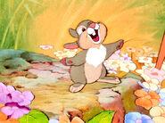 Thumper (7)
