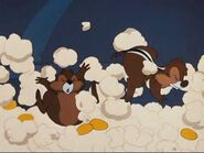 Popcorn-chip-and-dale-251