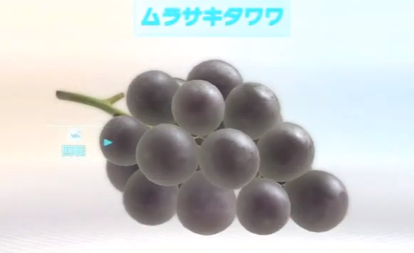 File:00fruit5.png