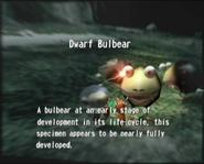 Reel6 Dwarf Bulbear