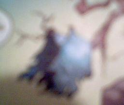 File:Cloak of Caladonis.jpg