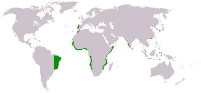 Portuguese empire map