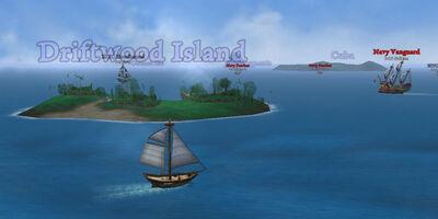 Island Driftwood