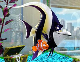 File:FindingNemo-gill.jpg