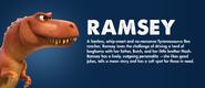Ramsey Profile