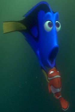 File:Nemo-&-Dory 5.JPG