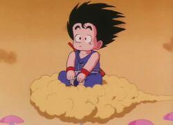Goku na Kinto.jpg