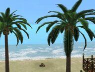 Beach or not to beach.jpg