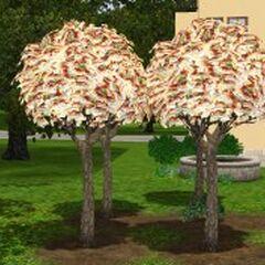 Drzewko pieniężne