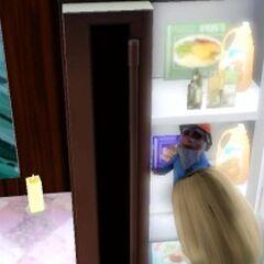 Gnom w lodówce