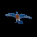 Bluebird Transparent.png