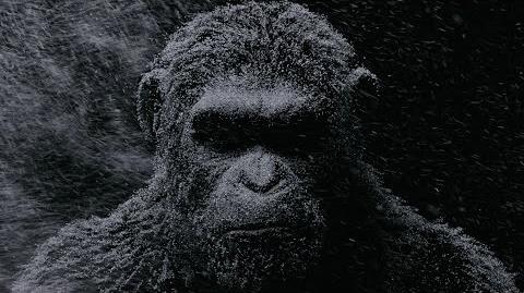 War for the Planet of the Apes New York Comic-Con Digital Billboard