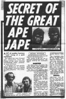 Ape jape