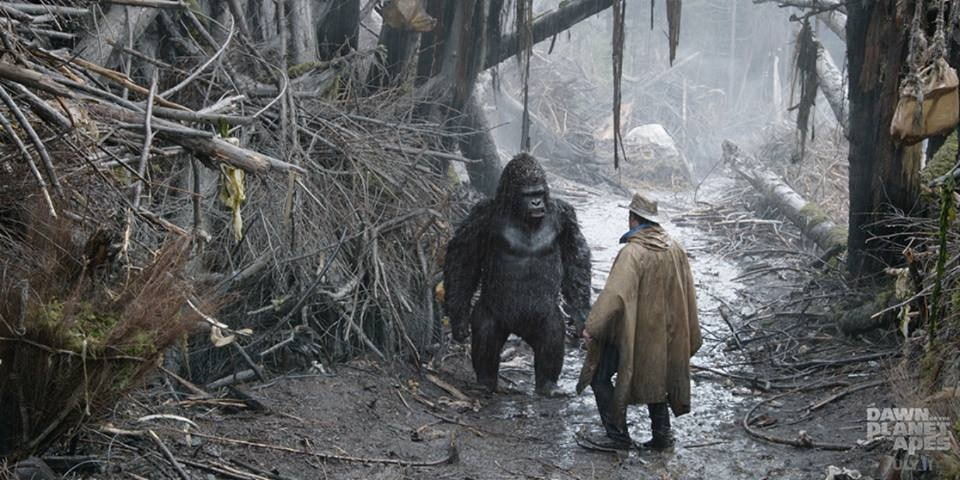 Dawn Of The Planet Of The Apes Cornelia Gives Birth