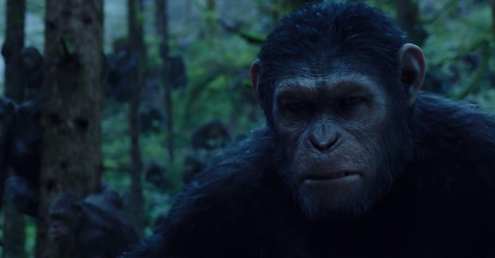 Category:Caesar's Ape Colony (CE)   Planet of the Apes ...