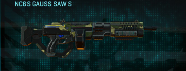 Temperate forest lmg nc6s gauss saw s