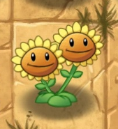 File:Twin Sunflowere.png