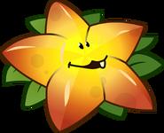 Lolzy Starfruit