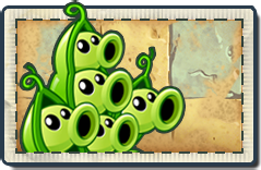 File:Pea Pod New Ancient Egypt Seed Packet.png