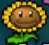 File:DS Sunflower.png
