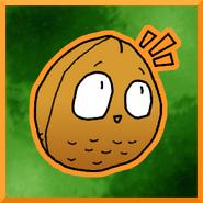 Wallnuticon