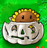File:Sunflower Imitater pumpkin.PNG