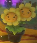 Twin Heal Flower 16