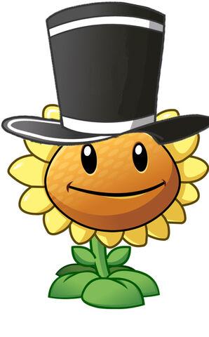 File:Magician flower.jpg
