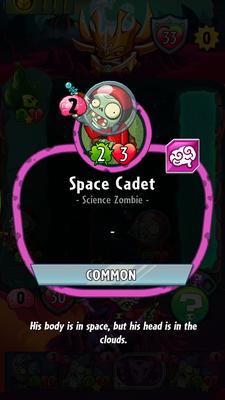 Cadet description