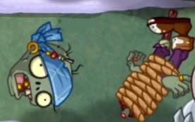 File:Dead Zombie Seagull.jpg
