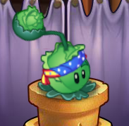 File:Cabbage Costume PvZOL.png