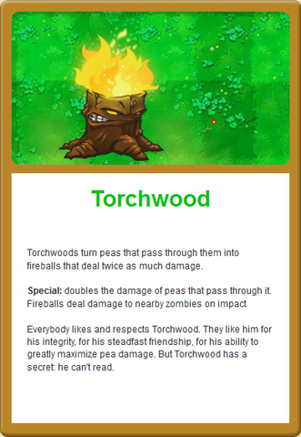 File:Torch Online.png