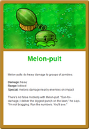 Melon Online