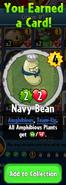 Earning Navy Bean
