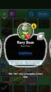 Navy Bean Description