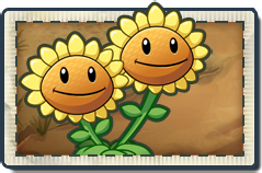 File:Twin Sunflower New Wild West Seed Packet.png