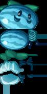 Melonofwinter