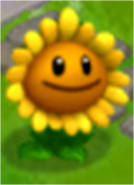 Sunflower in the Game