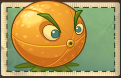 File:Citron Seed packet without sun cost..png