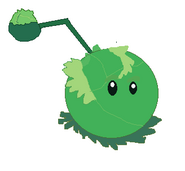 Cabbage Pult DRAWING!!!!!