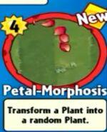 Receiving Petal-Morphosis