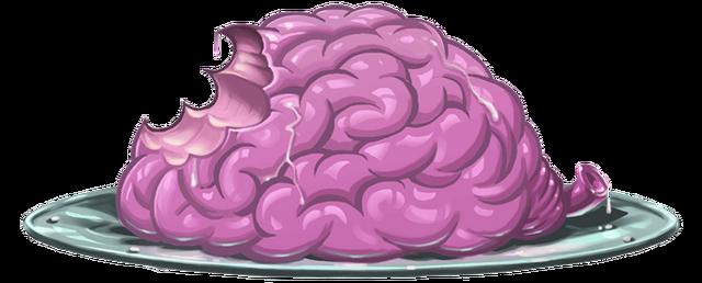 File:Brainonaplate.PNG