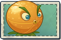 File:Citron Seed Packet.png