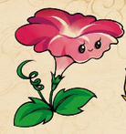 File:PVZ1MORNINGGLORY.PNG
