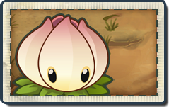 File:Power Lily New Wild West Seed Packet.png