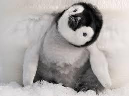 File:Pvz penguin.png