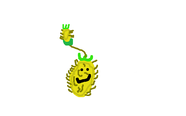 File:Pine-Pult.png