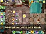 Underground Plants on Planks Message